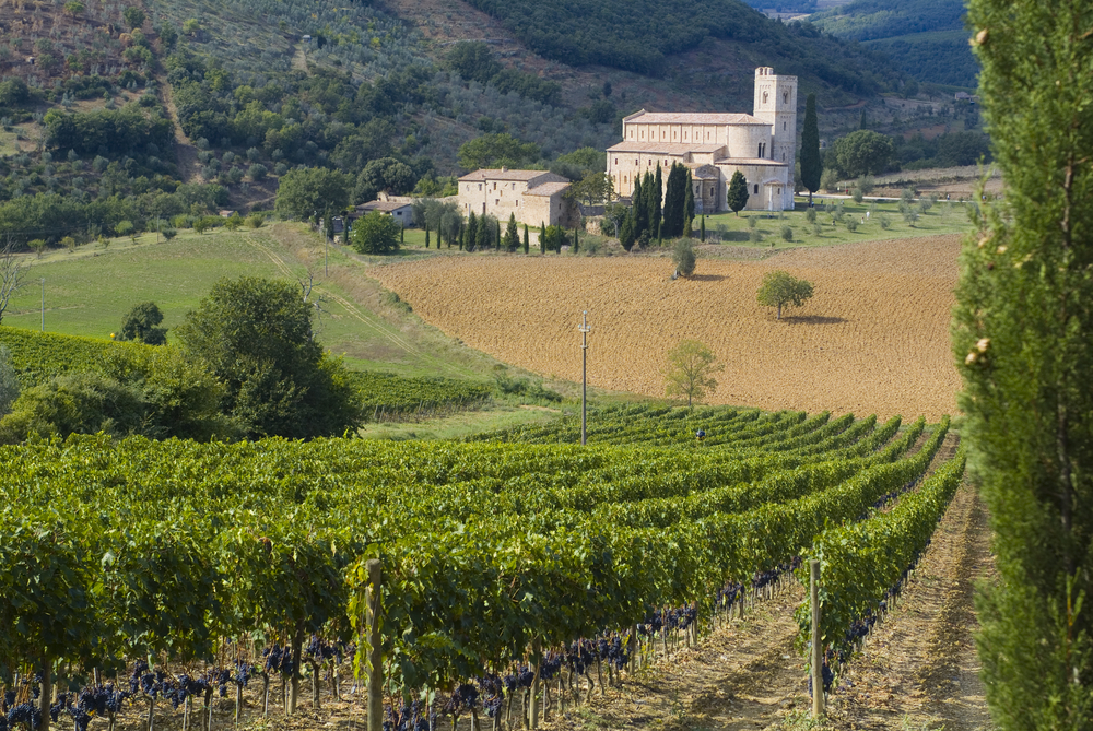 Wine-Tour-in-Tuscany